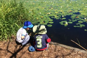 boys at lily pads