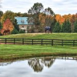 Planning A Family-Friendly Middleburg Getaway for Labor Day Weekend