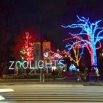 2019 Holiday Light Display Guide