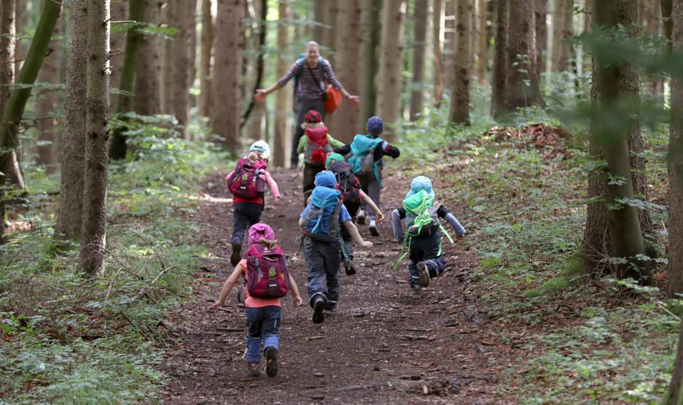 Playing in the forest is great for kids, but Lyme disease is a risk