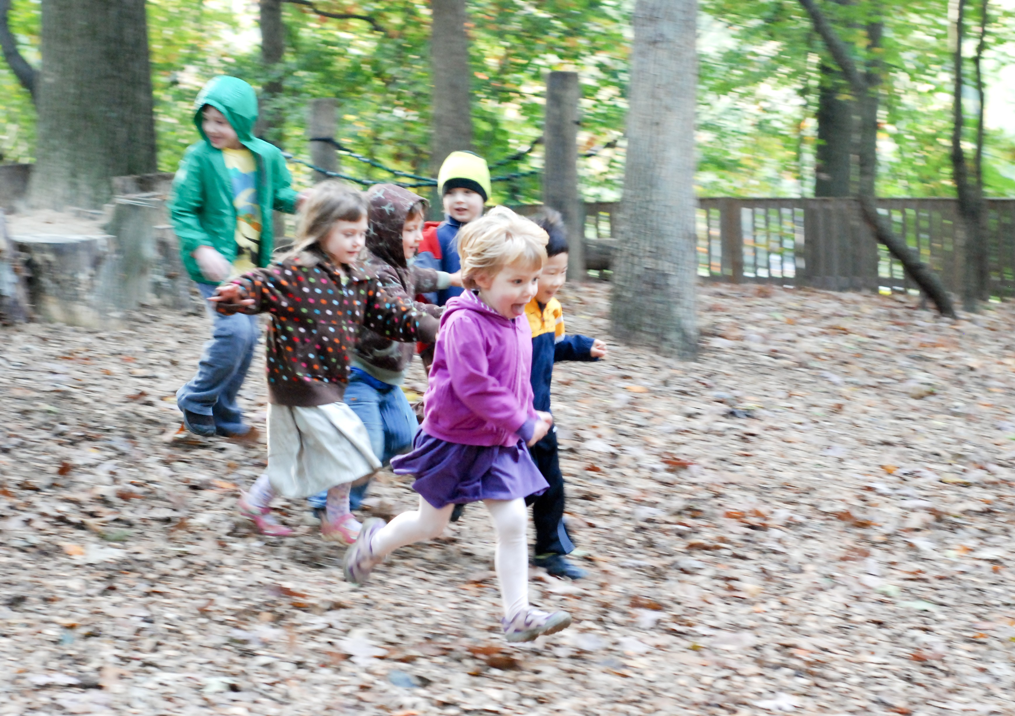 Acorn Hill in Silver Spring offers kids plenty of free play outdoors