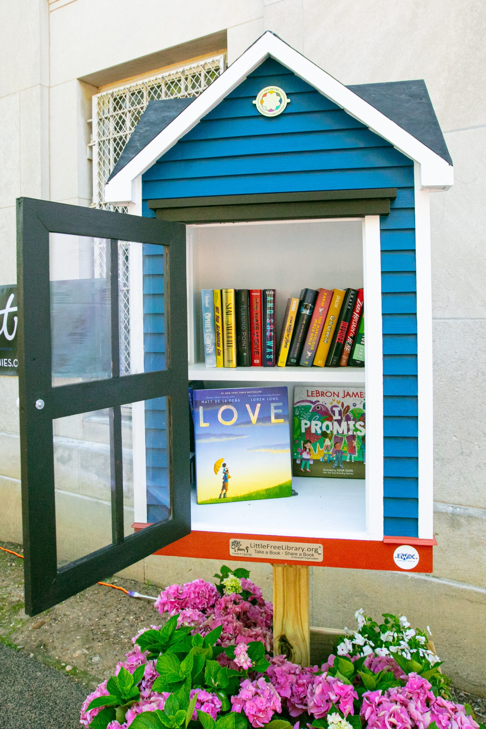 Little Free Library Read in Color Initiative